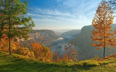 Letchworth State Park is opening their cabins and needed shades in a hurry!
